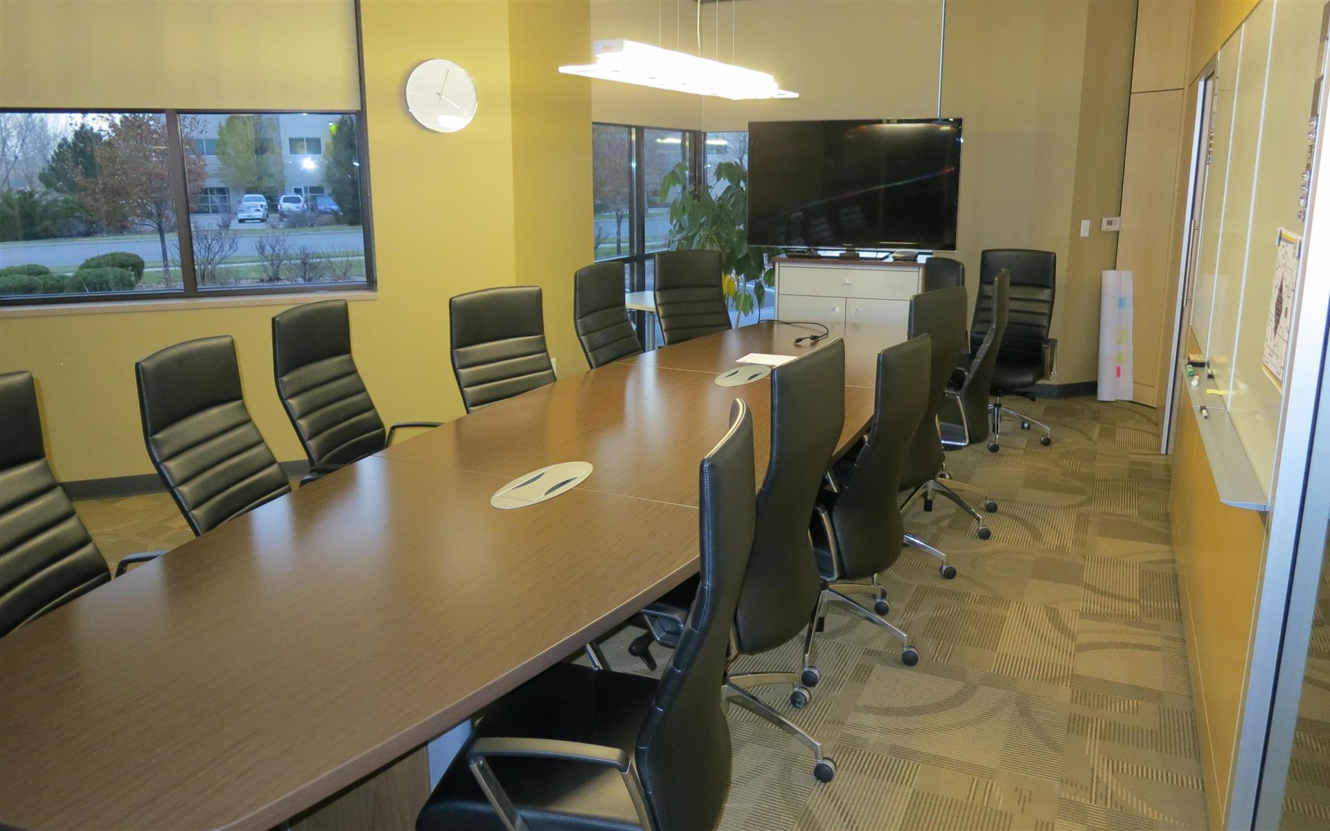 Goosetail Spaces - Executive Conference Room
