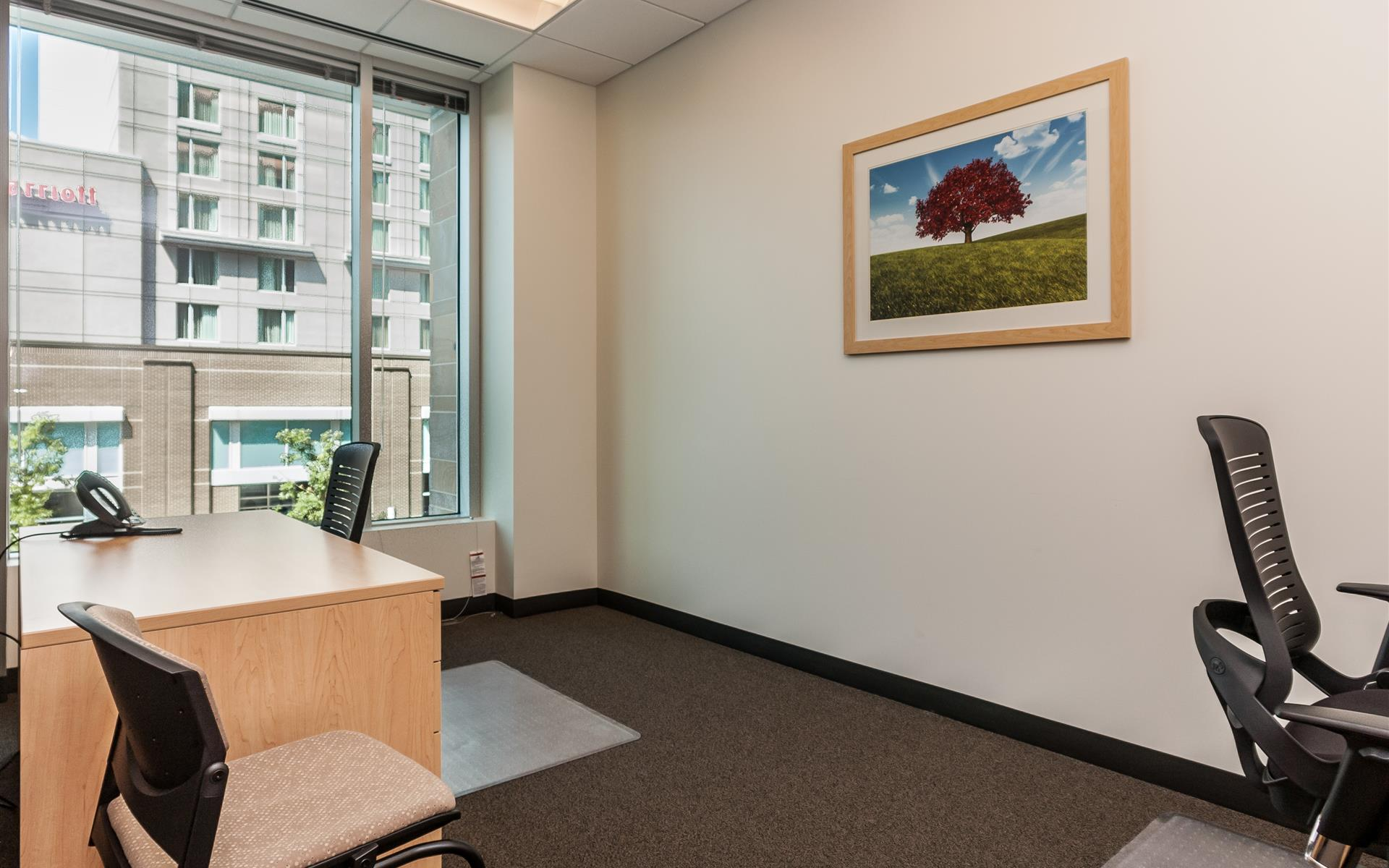 Intelligent Office of Raleigh - Team Office for 2 | Double Executive