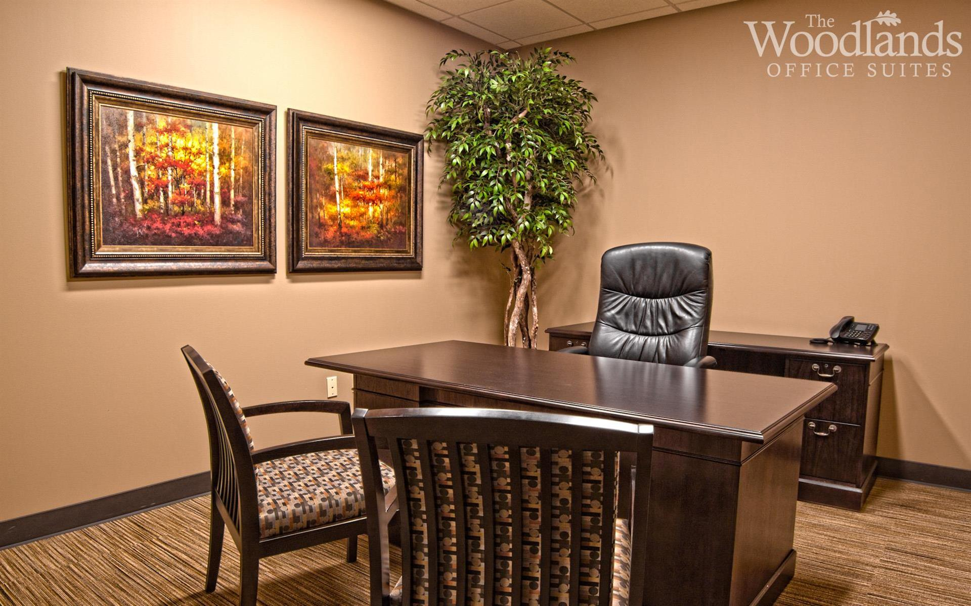 The Woodlands Office Suites - Suite #244 - Small Interior Office