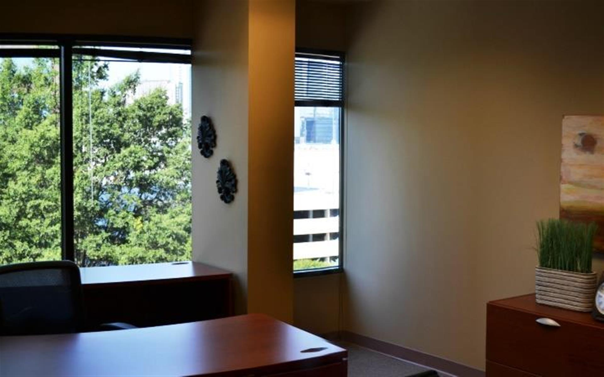 Peachtree Offices at Lenox, Inc. - Buckhead Office | Window View