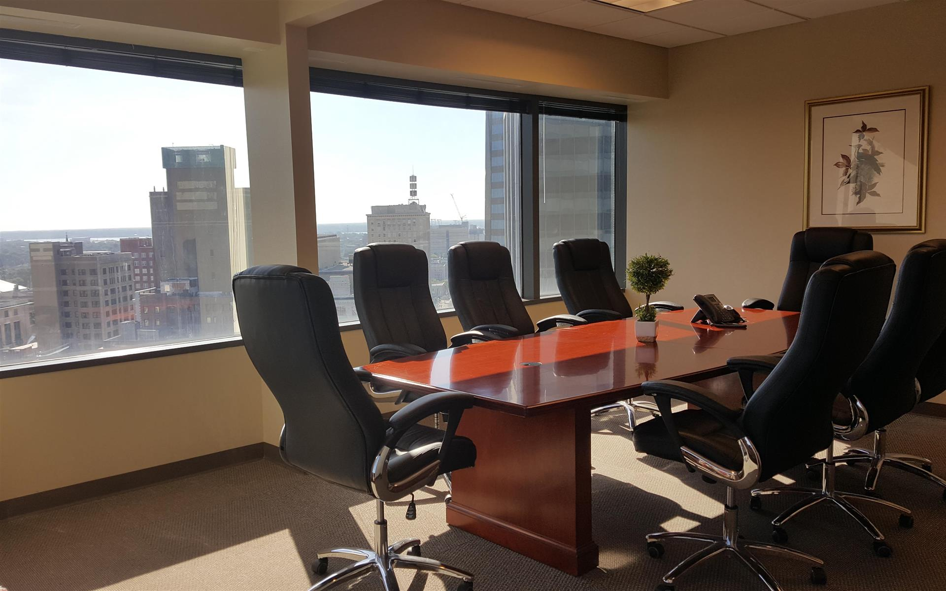 Executive Suite Professionals - Cityview Conference Room