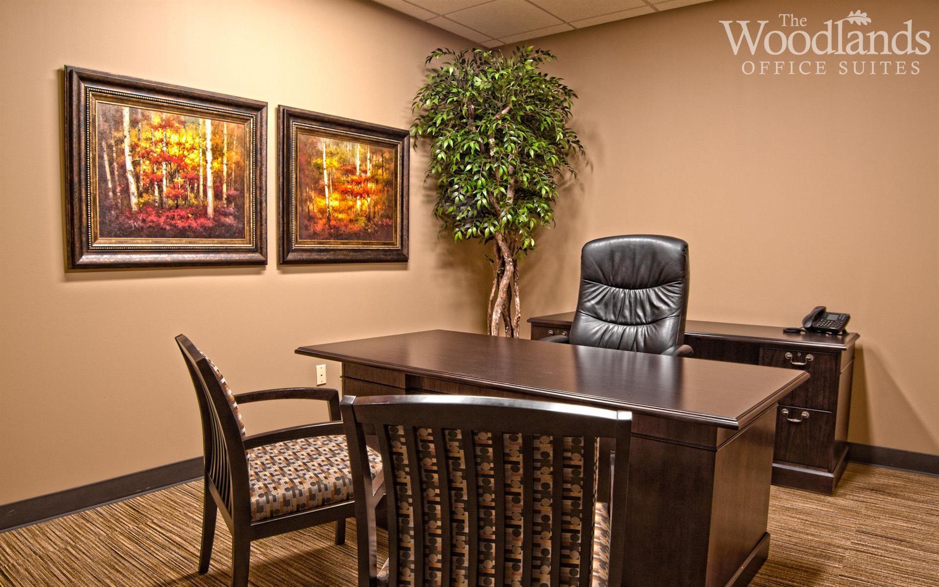 The Woodlands Office Suites - Suite #242 - Medium Interior Office