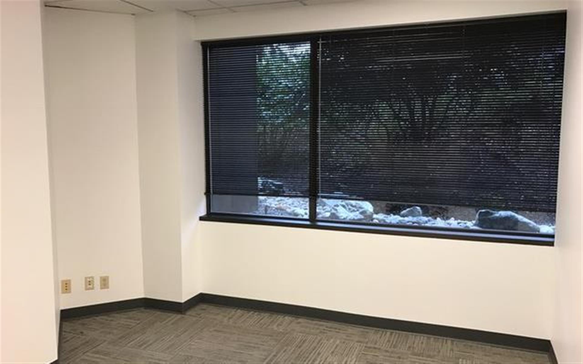 Office Space in Bellevue 405/520 Corridor - Window Office 1