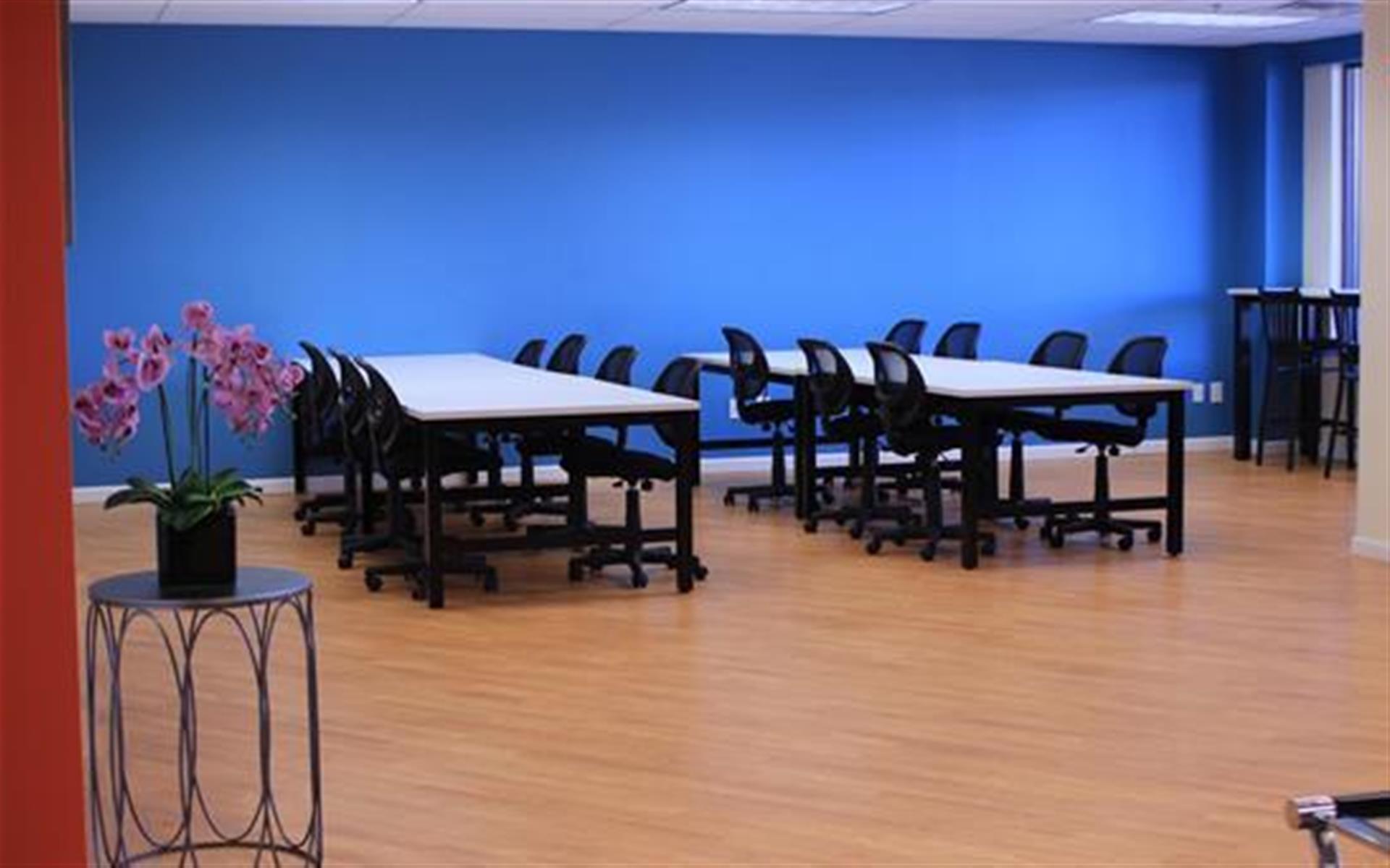 WorkPlace Club - Presentation/Seminar Area